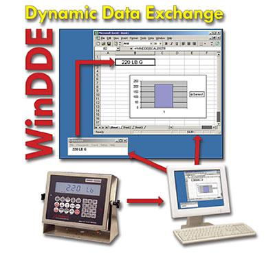 Cardinal Detecto WinDDE Dynamic Data                       Exchange
